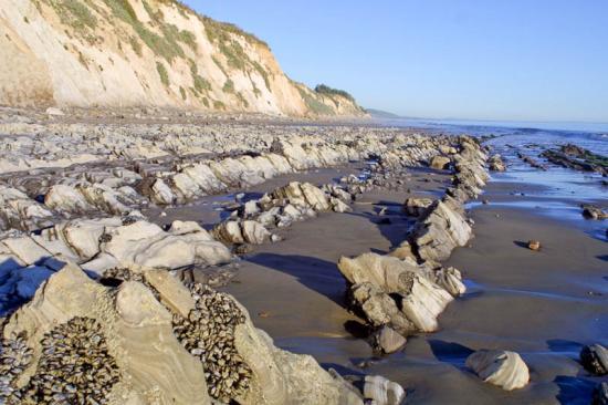 gaviota-beach-11