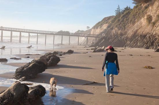 haskells-beach2-03