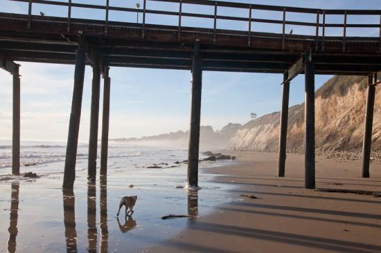 haskells-beach2-05