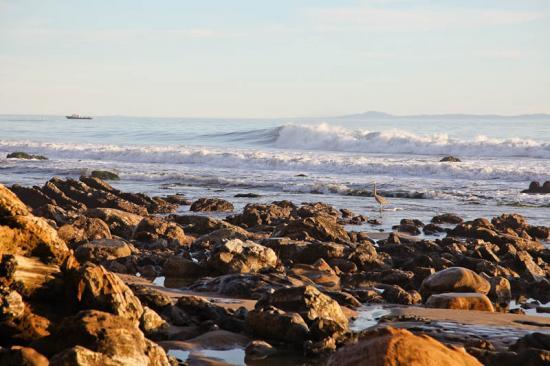 haskells-beach2-15