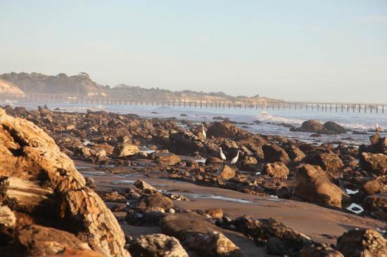haskells-beach2-17