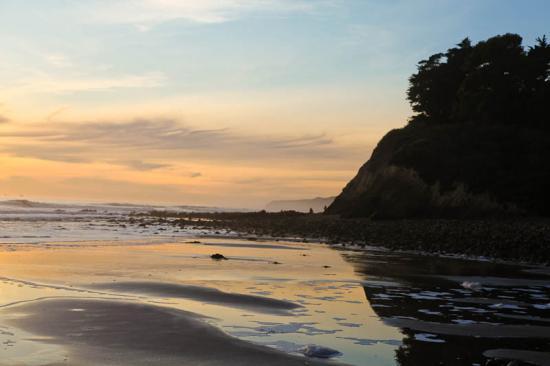 haskells-beach2-21