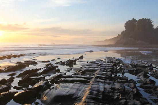 haskells-beach2-23