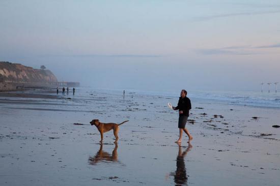 haskells-beach2-26