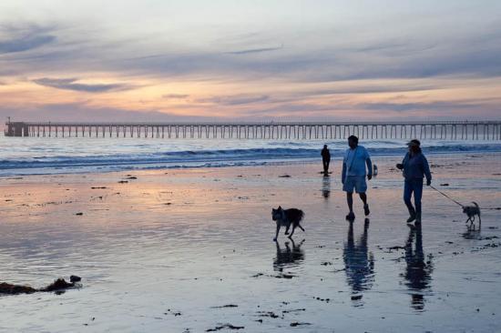 haskells-beach2-27