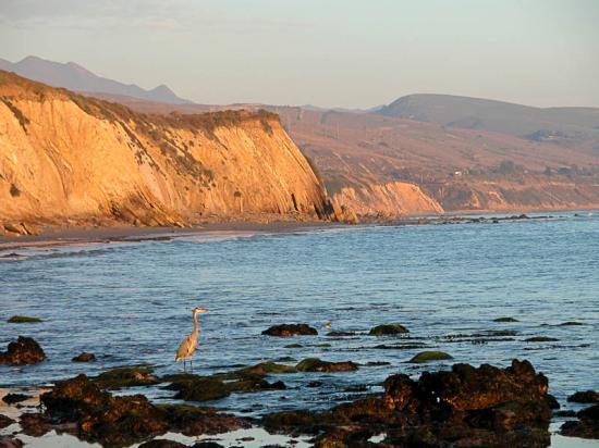 tajiguas-beach-106