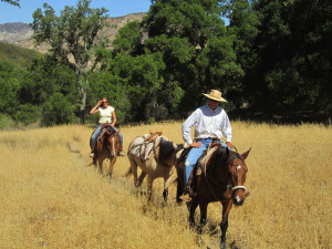 Los Padres Trail Riders